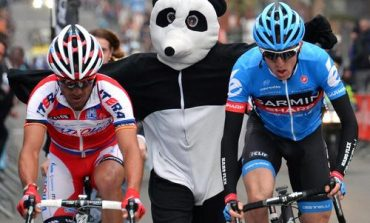 Le petit Panda du team Garmin-Sharp