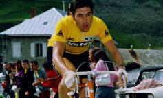 """Eddy Merckx: """" Je suis énormément déçu par ASO """""""